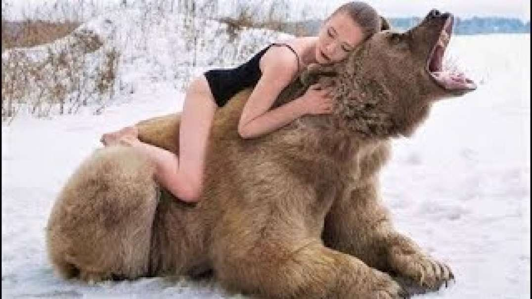 Animals That Do Not Forget Their Owner After Years 24
